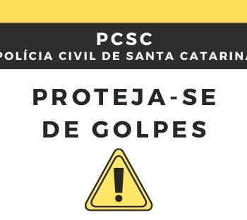 proteja-se-de-golpes-polícia-civil-divulga-guia-para-voce-se-proteger-contra-praticas-criminosas-que-cresceram-na-pandemia